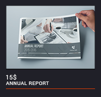 The Annual Report - 20
