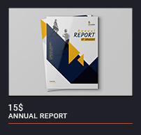 Annual Report - 12