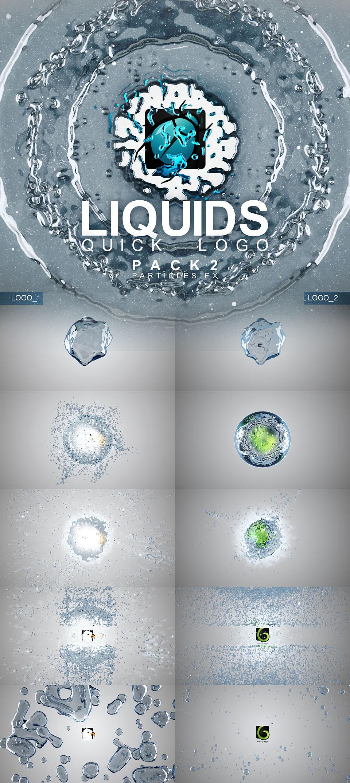 Liquid Quick Logo Pack 2 - 1