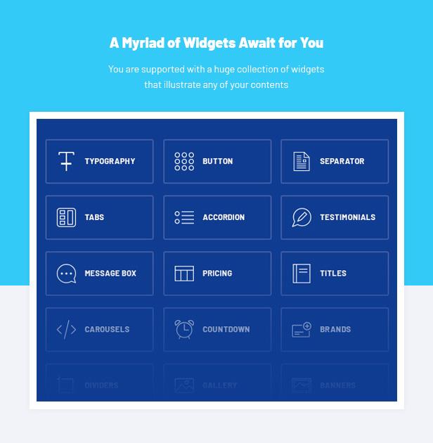 Consulting WordPress Theme - Widgets