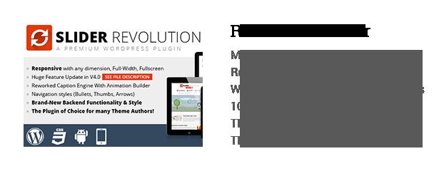 Mundus - A Business One Page WordPress Theme - 5