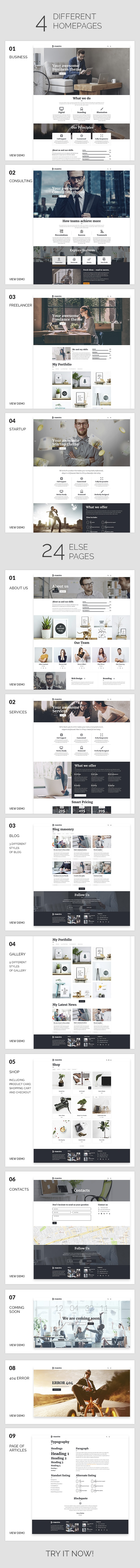 Business | Business Maestro WordPress for Business - 5