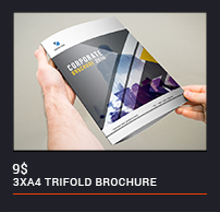 Trifold Brochure - 90