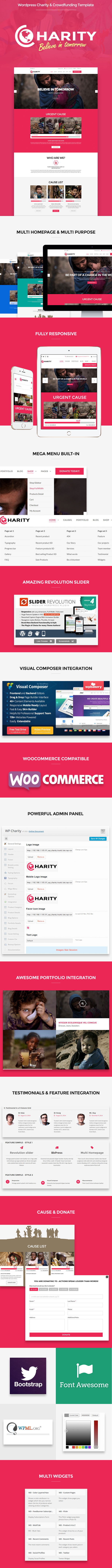 Wordpress Charity