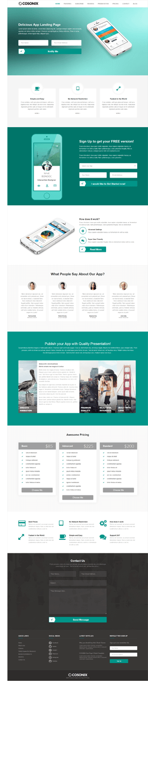 Cosonix - One-Page Theme for eBook, App and Agency - 2