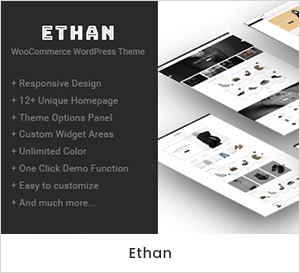 Ethan - Responsive WooCommerce WordPress Theme