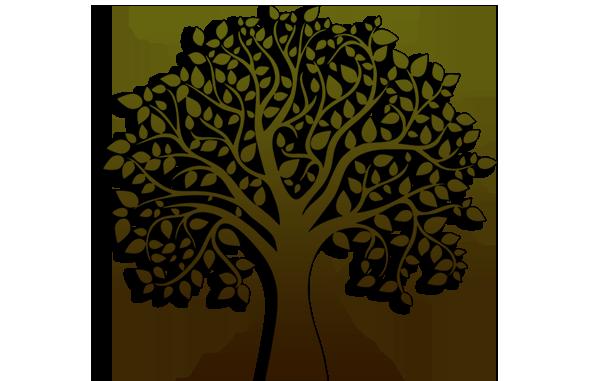photo tree_zps3b63345d.png