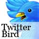 FC Twitter Bird
