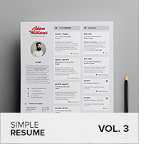 Clean Resume Vol. 5 - 23