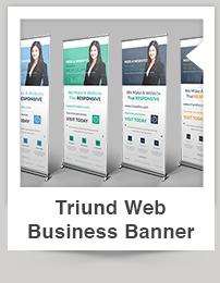 Triund Web Business Bi-Fold Brochure - 2